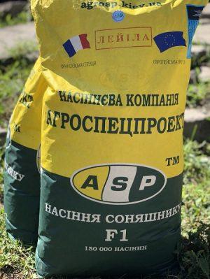 гибрид,французкая селекия, подсолнечник устойчивый к заразизе