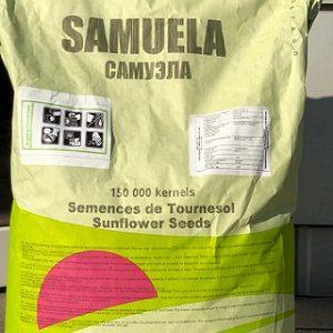 Семена подсолнечника Самуэла