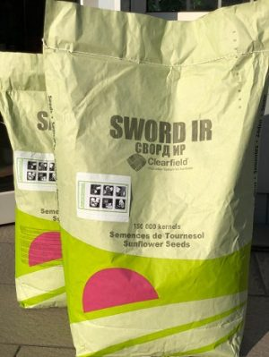 гибрид сворд,семена подсолнечника сворд,подсолнечник сворд