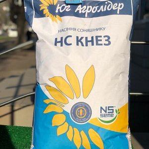 Семена подсолнечника НС Кнез