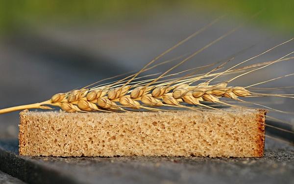 пшеница культурное растение, мукомольные свойства зерна пшеницы, значение пшеницы,хлеб из пшеницы,пшеничный хлеб