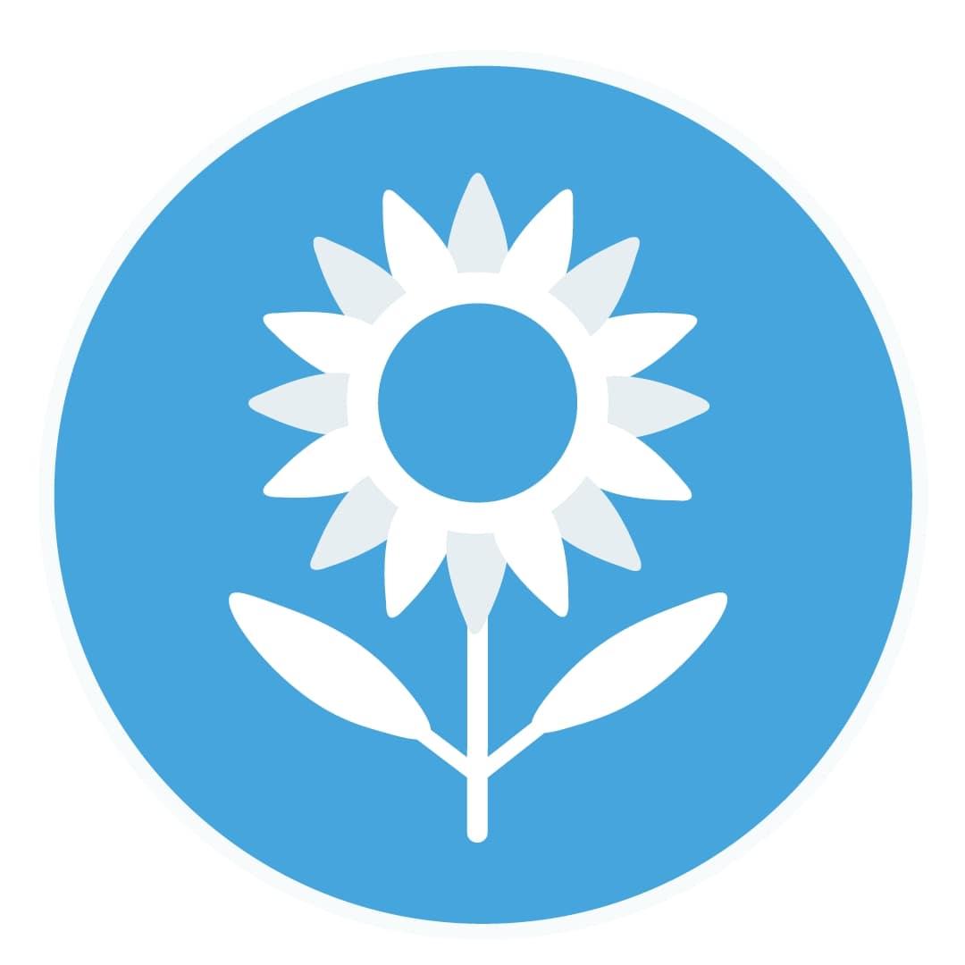подсолнечник,семена подсолнечника,посевмат подсолнуха,гибриды подсолнечника