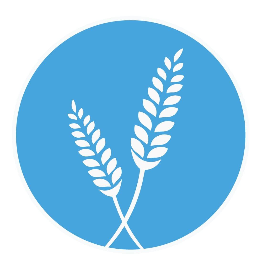семена зерновых,посевмат,семена озимых,семена яровые зерновые